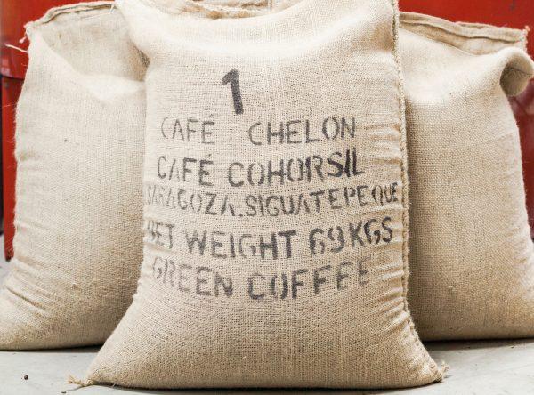 green coffee beans from honduras