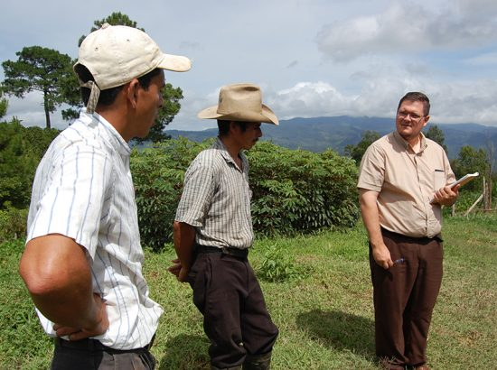 why direct trade coffee is important