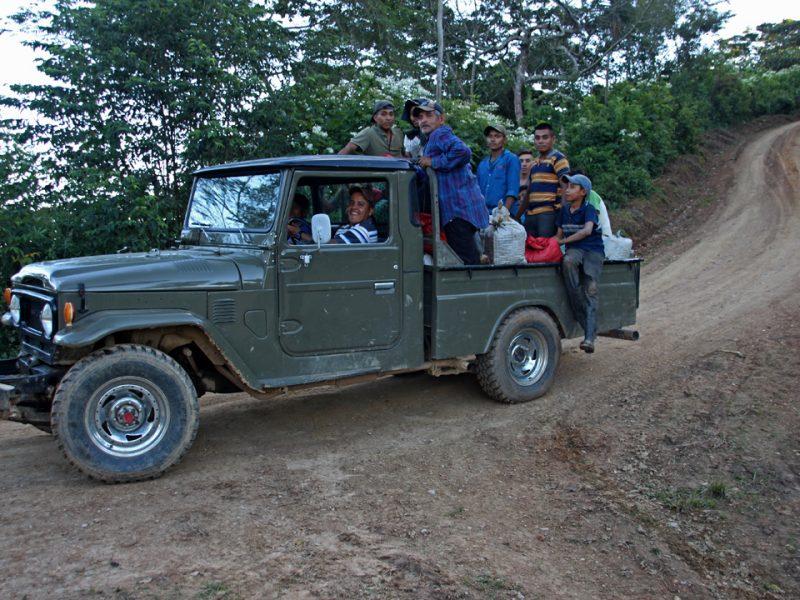 4 hauling coffee to wet mill 2019 coffee harvest in honduras