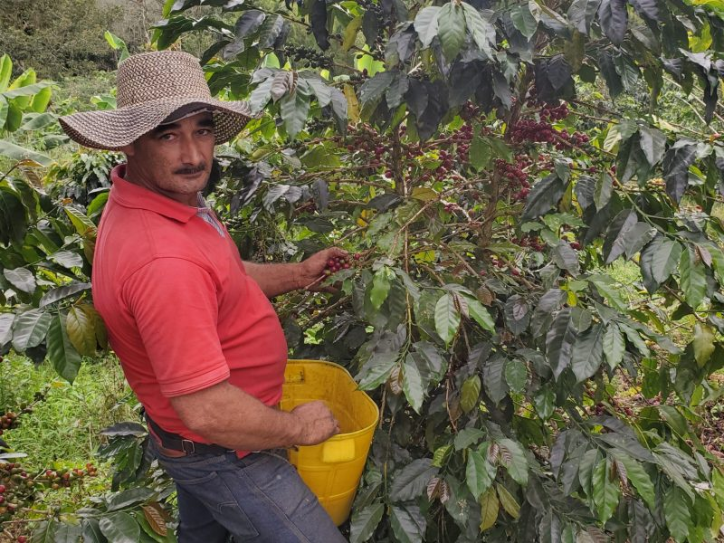 columbian coffee fair trade