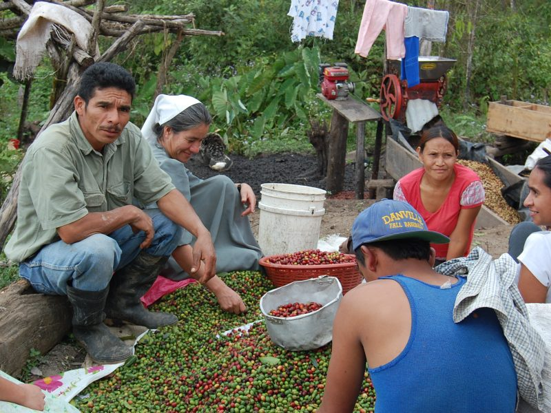 our directly sourced coffee farmers