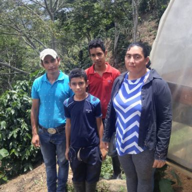 sustainable coffee from honduras grown by deysimo mejia montufar 4500lbs