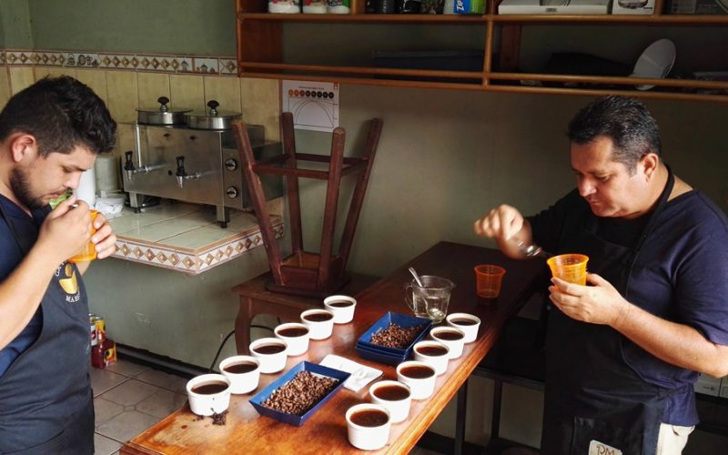 15 farm to cup coffee cupping coffee