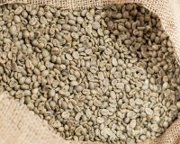 green gourmet coffee beans